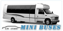 Mini Bus rental in Miami, FL